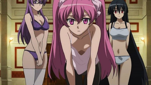 Akame ga Kill! Hot Sheele Akame Mine