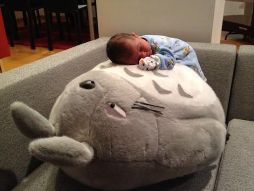 Tonari no Totoro: Baby on Totoro
