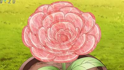 Toriko Food Rose Ham Flower
