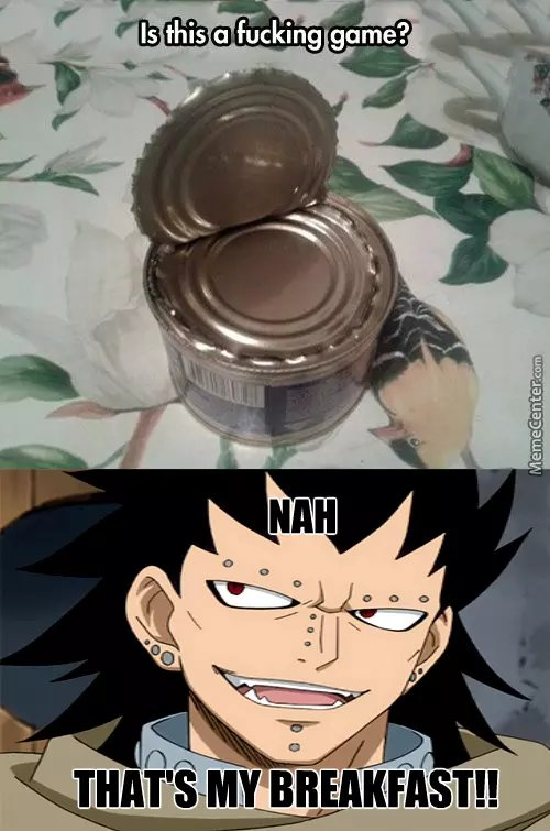 Fairy Tail Gajeel Redfox Fairy Tail memes
