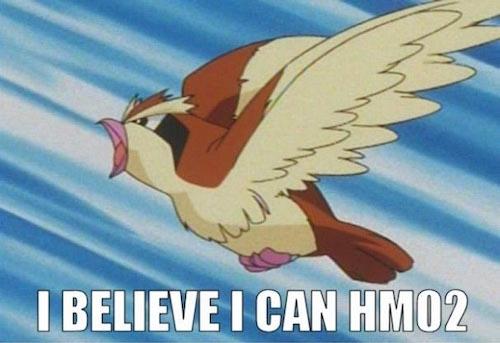 pidgey, hm02, pokemon jokes, pun, meme, joke