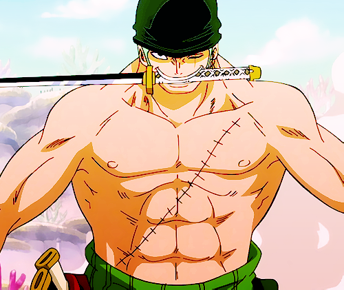 Zoro Roronoa from One Piece has hot anime abs!