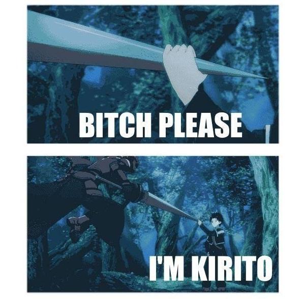 15 of the Funniest Sword Art Online Memes - 9