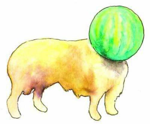 the melancholy of haruhi suzumiya, melon collie, pun, funny, joke