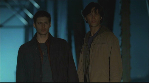 Winchester Brothers Supernatural