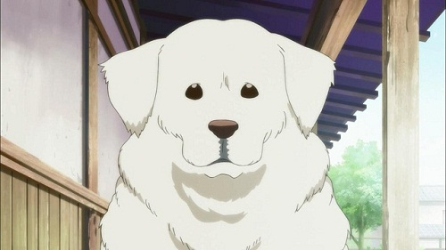 Armageddon is a cute anime dog from Hayate the Combat Butler! Cuties