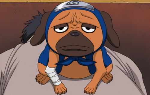 Pakkun is a cute anime dog from Naruto
