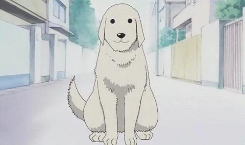 Tadakichi-san is a cute anime dog from Azumanga Daioh