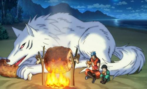 Toriko Terry Toriko Eating anime wolf anime wolves