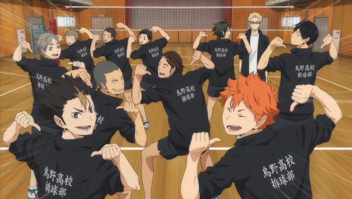 Haikyuu!! Karasuno High Volleyball Team