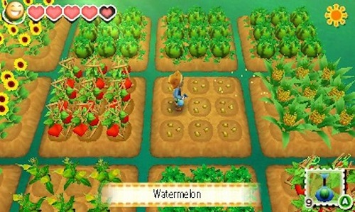 Story of Seasons Farm