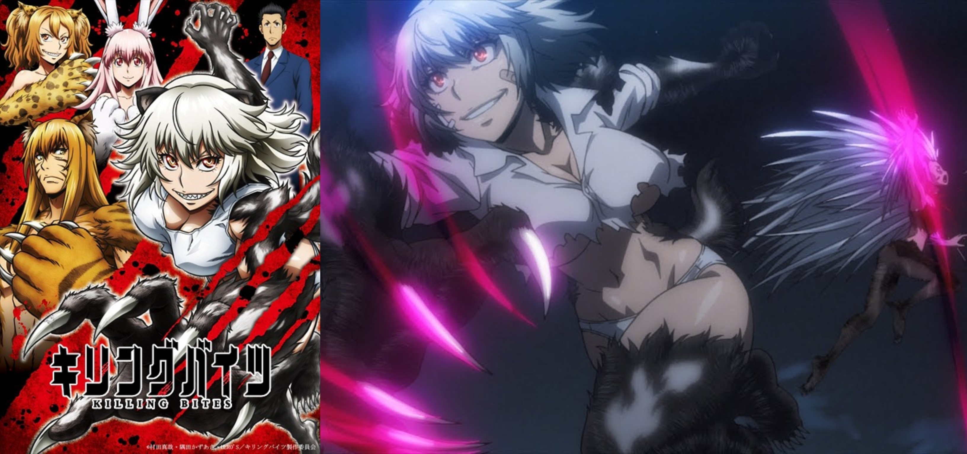 Mal Staff Picks Anime Of The Year 2018 Myanimelist Net